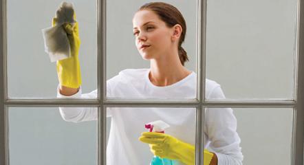 Labores Domésticas
